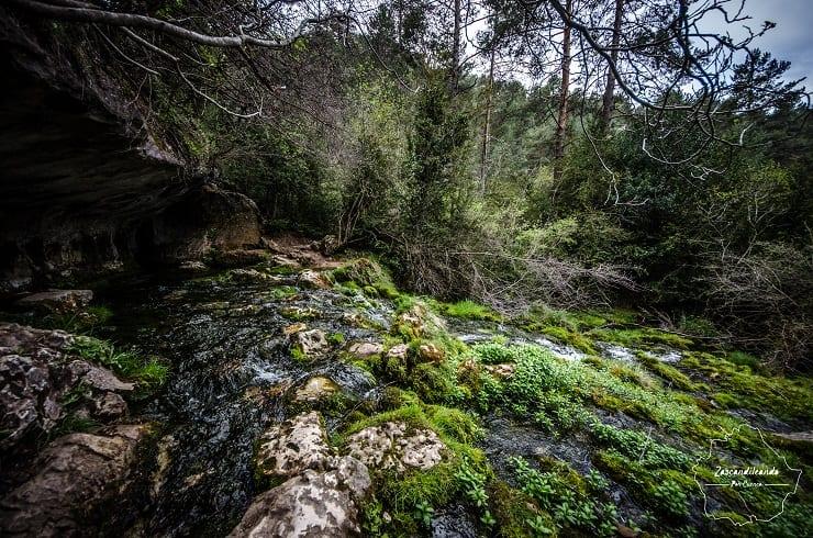 Surgencia del Río Cuervo