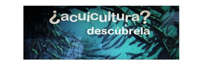 ¿Acuicultura? Descúbrela en Cuenca