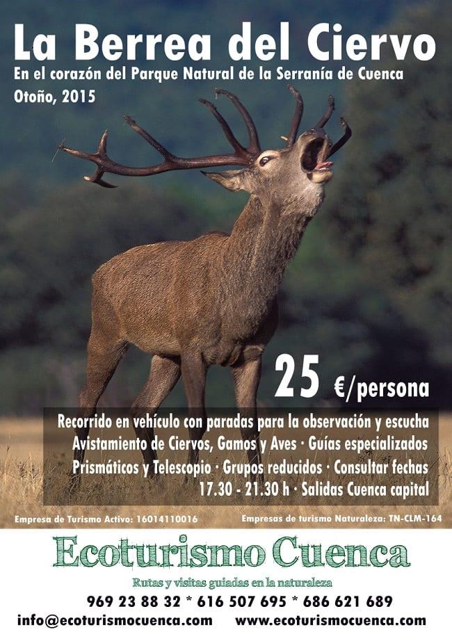 Berrea del Ciervo en la Serranía de Cuenca