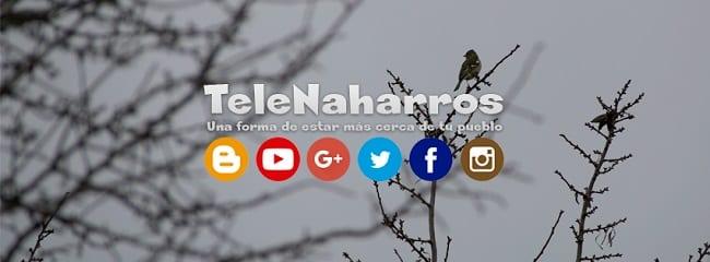 Medio local de Naharros