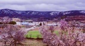Panorámica de Canalejas del Arroyo, Cuenca