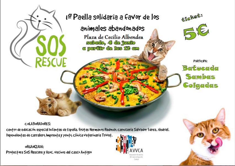 Paella_Solidaria_Animales_abandonados