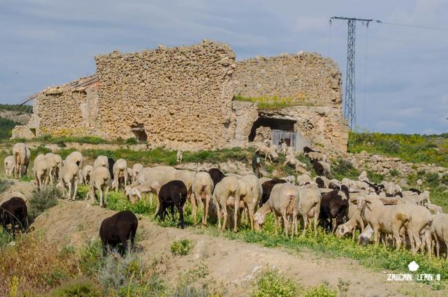 La casa de la Tercia está en las afueras de Zarza de Tajo