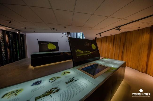 El centro de interpretación del Parque Natural de la Serranía de Cuenca se halla en Tragacete