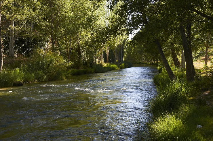 Río Tajo a su paso por el pueblo de Trillo, en Guadalajara