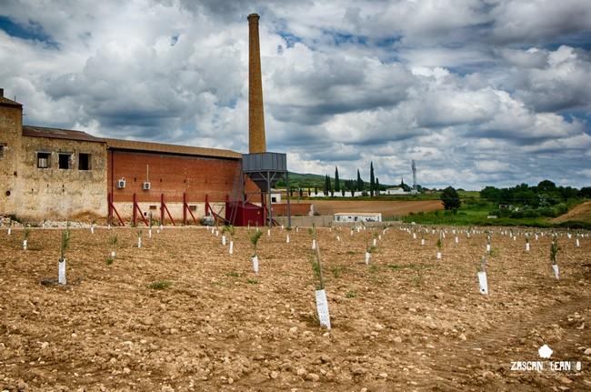La chimenea es el símbolo de la antigua industria en Vellisca
