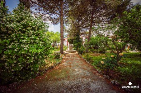 Jardines junto al Ayuntamiento de Vellisca