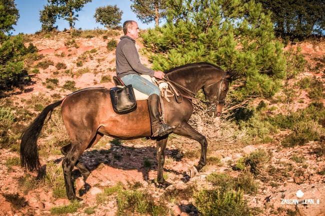 Mucho más cómodo ir en caballo que ir a pie