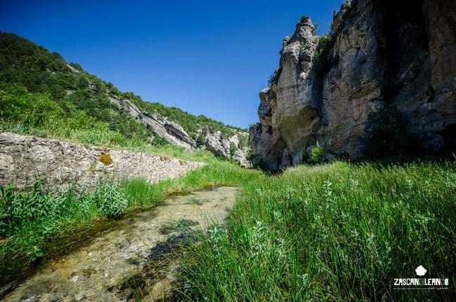 En época estival suelen verse en el Estrecho de San Blas las primeras aguas del Júcar
