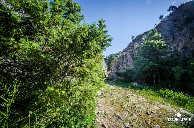 El río Júcar nace en los Ojuelos de Valdeminguete, término municipal de Tragacete
