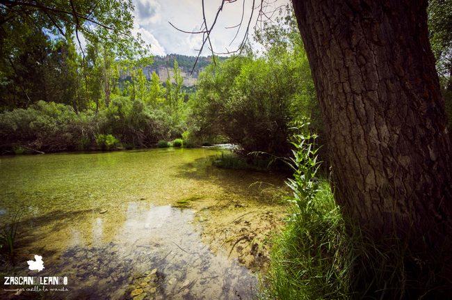 Peralejos de las Truchas tiene cientos de parajes naturales interesantes en torno al río Tajo