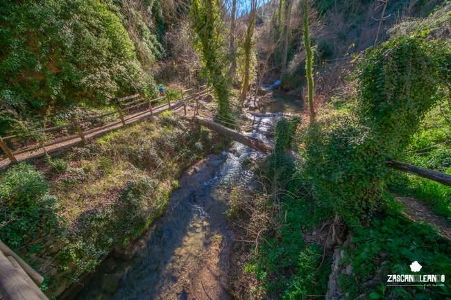 La zona de El Postigo posee una naturaleza frondosa y bella