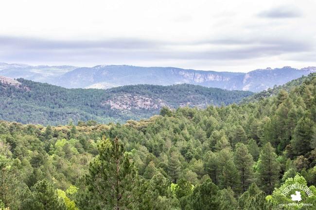 El parque natural Calares del Mundo y de la Sima es un espectáculo visual