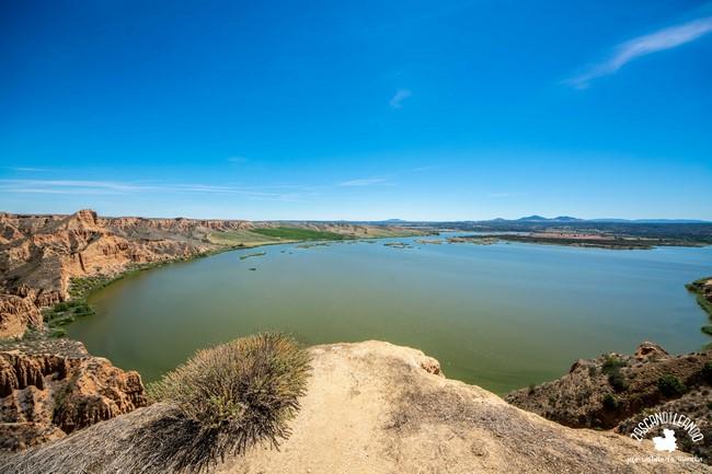 Pertenecen al Monumento Natural Barrancas de Castrejón y Calaña