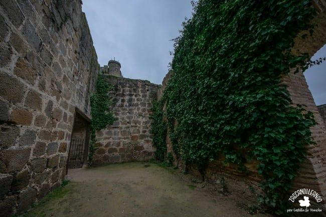 Enredaderas en las murallas del castillo